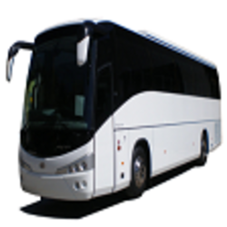 limo and minibuses