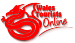 Wales Tourists Online Logo