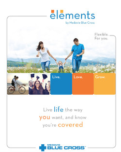 Blue Cross Elements Insurance by Blue Country Insurance